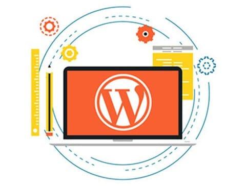 WordPress Developement